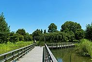 西東京いこいの森公園 約470m(徒歩6分)