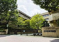 茅ヶ崎小学校 約430m(徒歩6分)