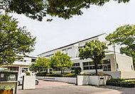 茅ヶ崎中学校 約300m(徒歩4分)