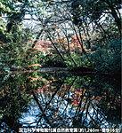 国立科学博物館付属自然教育園 約1,260m(徒歩16分)
