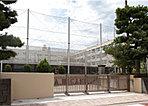 横浜市立綱島東小学校 約490m(徒歩7分)