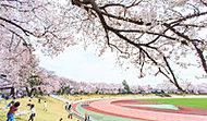 武蔵野陸上競技場 約420m(徒歩6分)