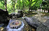 滝野川公園 約590m(徒歩8分)