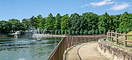 桃山公園 約300m(徒歩4分)