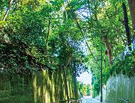 真間山緑地 約70m(徒歩1分)