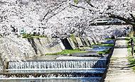 夙川公園 約930m(徒歩12分)