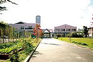 国立宮城教育大学附属小学校 約530m(徒歩7分)