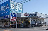 ビッグ・エー 柏中央店 約580m(徒歩8分)