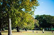 篠崎公園(A地区) 約1,180m(徒歩15分)