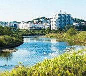 鶴見川サイクリングロード 約1,740m(徒歩22分) ※2014年10月撮影