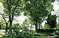 区立西保木間公園 約20m(徒歩1分)