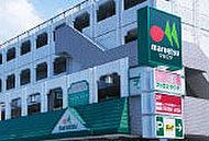 マルエツ練馬高松店 約790m(徒歩10分)