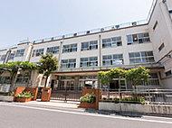 綾瀬小学校 約230m(徒歩3分)