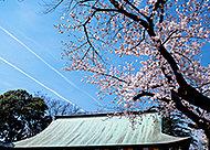喜多院 約1,890m