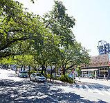 東急田園都市線「宮崎台」駅 約400m(徒歩5分)