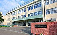 緑丘小学校 約880m(徒歩11分)