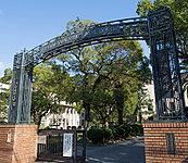 大阪女学院高等学校 約360m(徒歩5分)