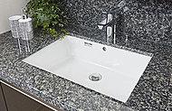 洗面カウンタートップは継ぎ目のない一体型なので、お手入れも簡単。素材は、重厚さが漂う本物の質感をもった天然石。