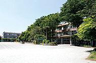 上石神井北小学校 約590m(徒歩8分)
