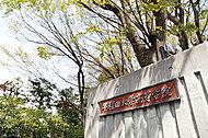 早稲田大学高等学院 約420m(徒歩6分)