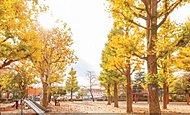 田向公園 約530m(徒歩7分/自転車3分)