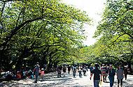 上野恩賜公園 約790m(徒歩10分)