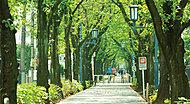 花と緑の散歩道 約120m(徒歩2分)