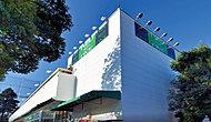 フードワン淵野辺店 約360m(徒歩5分)