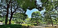 鹿沼公園 約1,070m(徒歩14分)