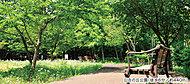 日吉の丘公園 約440m(徒歩6分)