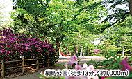 綱島公園 約1,000m(徒歩13分)