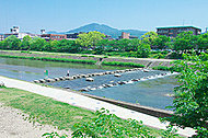 鴨川公園 約480m