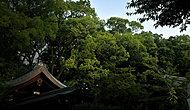 梨木神社 約120m(徒歩2分)(平成27年7月撮影)