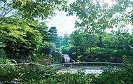 泉中央公園(2009年6月撮影) 約170m(徒歩3分)