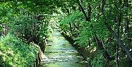 玉川上水緑道 約90m(徒歩2分)