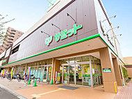 サミットストア 野沢龍雲寺店 約820m(徒歩11分)