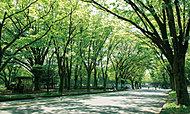駒沢オリンピック公園 約210m(徒歩3分)