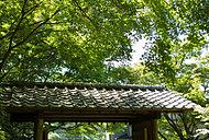 久良岐公園 約740m(徒歩10分)