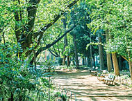 稲付公園 約1,250m(徒歩16分)