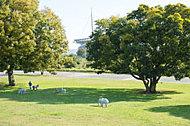 矢作緑地白浜公園 約570m(徒歩8分)
