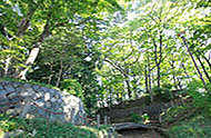世田谷城址公園 約370m(徒歩5分)