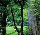 北海道大学植物園 約1,370m(徒歩18分)