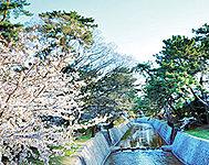 夙川公園 約170m(徒歩3分)