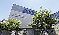 区立王子小学校・区立王子桜中学校 約440m(徒歩6分)※通学路