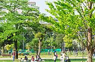中野四季の森公園 約500m(徒歩7分)