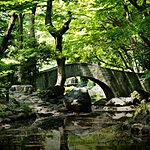 有栖川宮記念公園 約390m(徒歩5分)