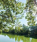 武蔵関公園 約1,450m(徒歩19分)