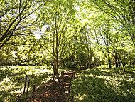武蔵国分寺公園 約530m(徒歩7分)