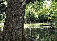 円山公園  約1,200m(徒歩15分)
