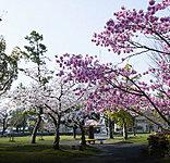 大垣公園 約190m(徒歩3分)
